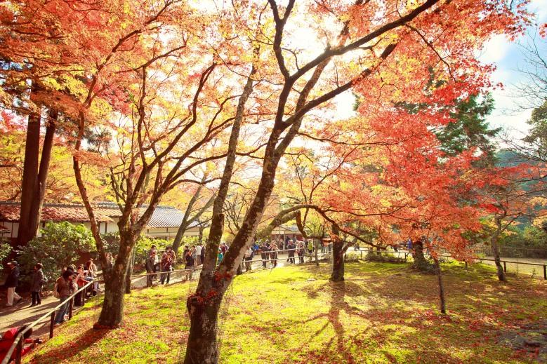 Kyoto-16