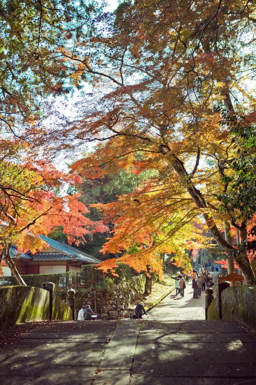 Kyoto-34